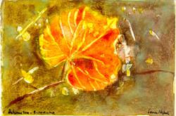 Vine Leaf 2