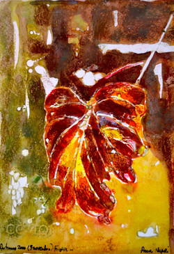 Vine Leaf 1