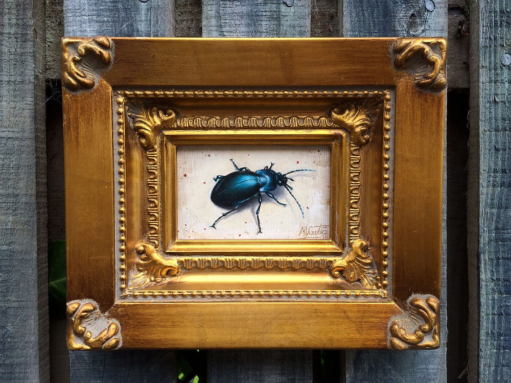 Rain Beetle Oil Painting by Matt Curtis