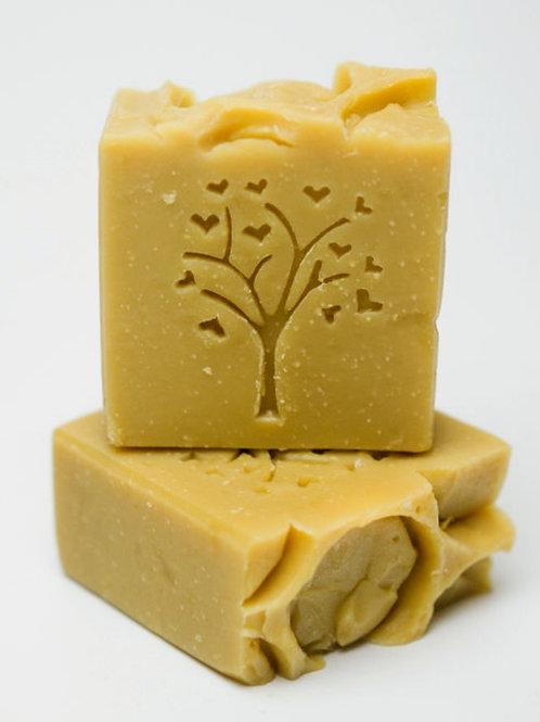 Şampon solid cu gudron de mesteacăn