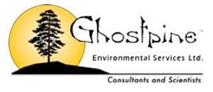 Ghostpine.JPG