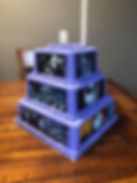 Nevaeh's Cake 1.jpg