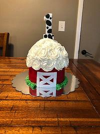 Jessica Birgy's Cake.jpg