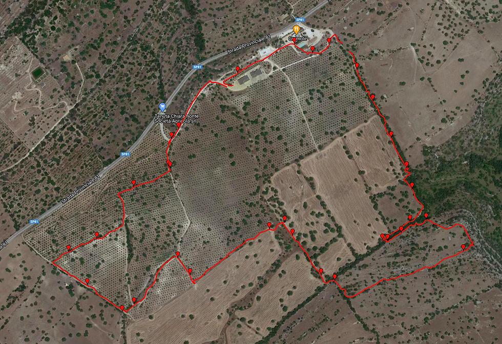 tracciato-percorso.png