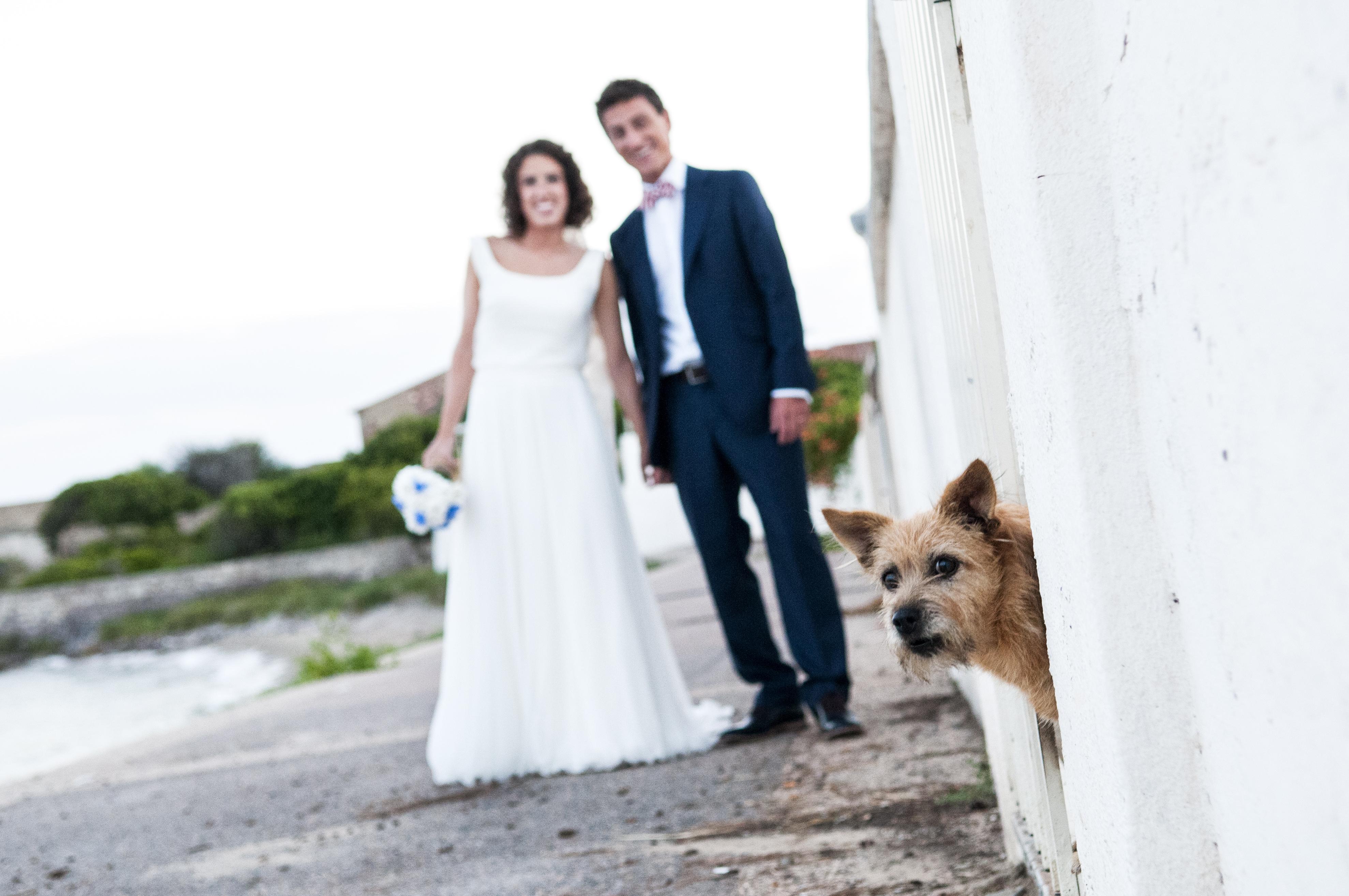fotografo matrimonio Sardinia