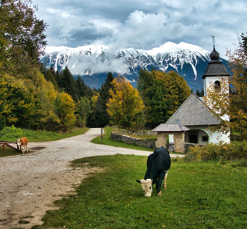 Slovenia Mountains (Photo by Giving Getaway)