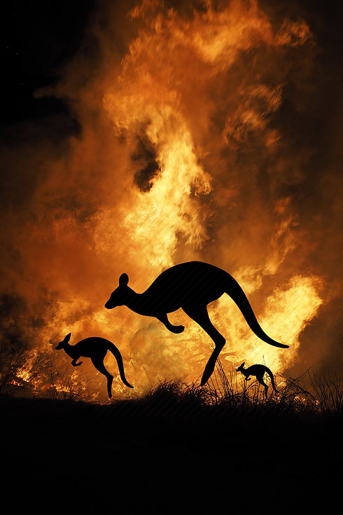 Bushfires in Australia, Giving Getaway