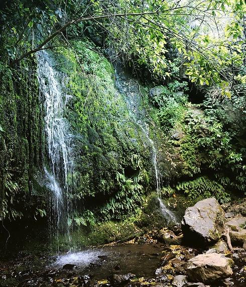 Waterfall on walk behind Akaroa