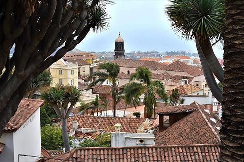 Town of Orotava on Tenerife