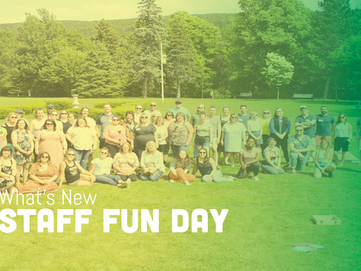 Celebrating Summer with a Staff Fun Day