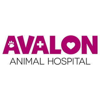 Avalon Animal Hospital.png