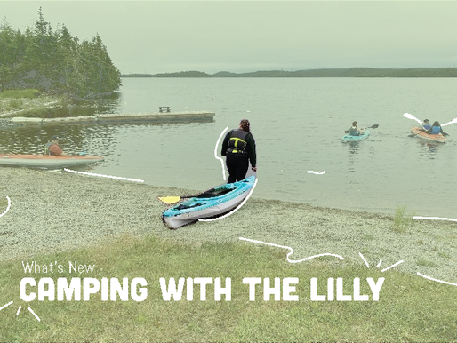 Camping with The Lilly
