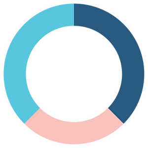 Pie Graph - Strategic - Compressed.png