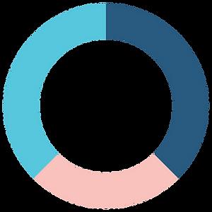 Pie Graph - Strategic - Compressed.png