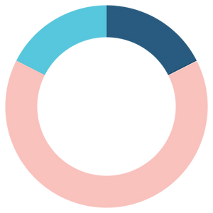 Pie Graph - Traditional - Compressed.png