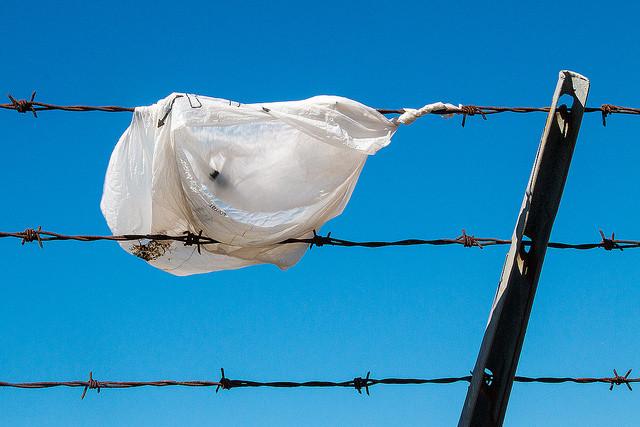 Single use plastic bag on fence