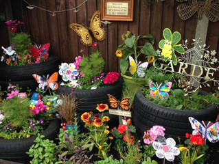 Our Butterfly Garden