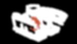 INST_TRIUNFO_que_brincadeira_e_essa_logo