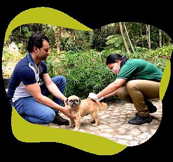 Promutuca-Informações_animais.png