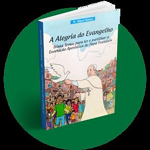 acopamec_testemunhos_livro 3.png
