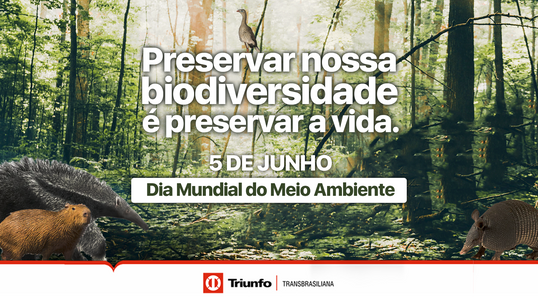 Triunfo Transbrasiliana desenvolve programa de monitoramento da fauna silvestre