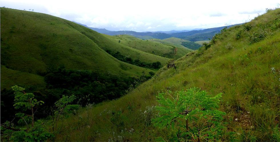 Promutuca Nova Lima Sustentabilidade Preservação Ambiental Vale do Mutuca Minas Gerais Brasil