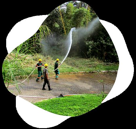 Promutuca Sustentabilidade Preservação Ambiental Vale do Mutuca Minas Gerais Brasil Treinamento Incêndio