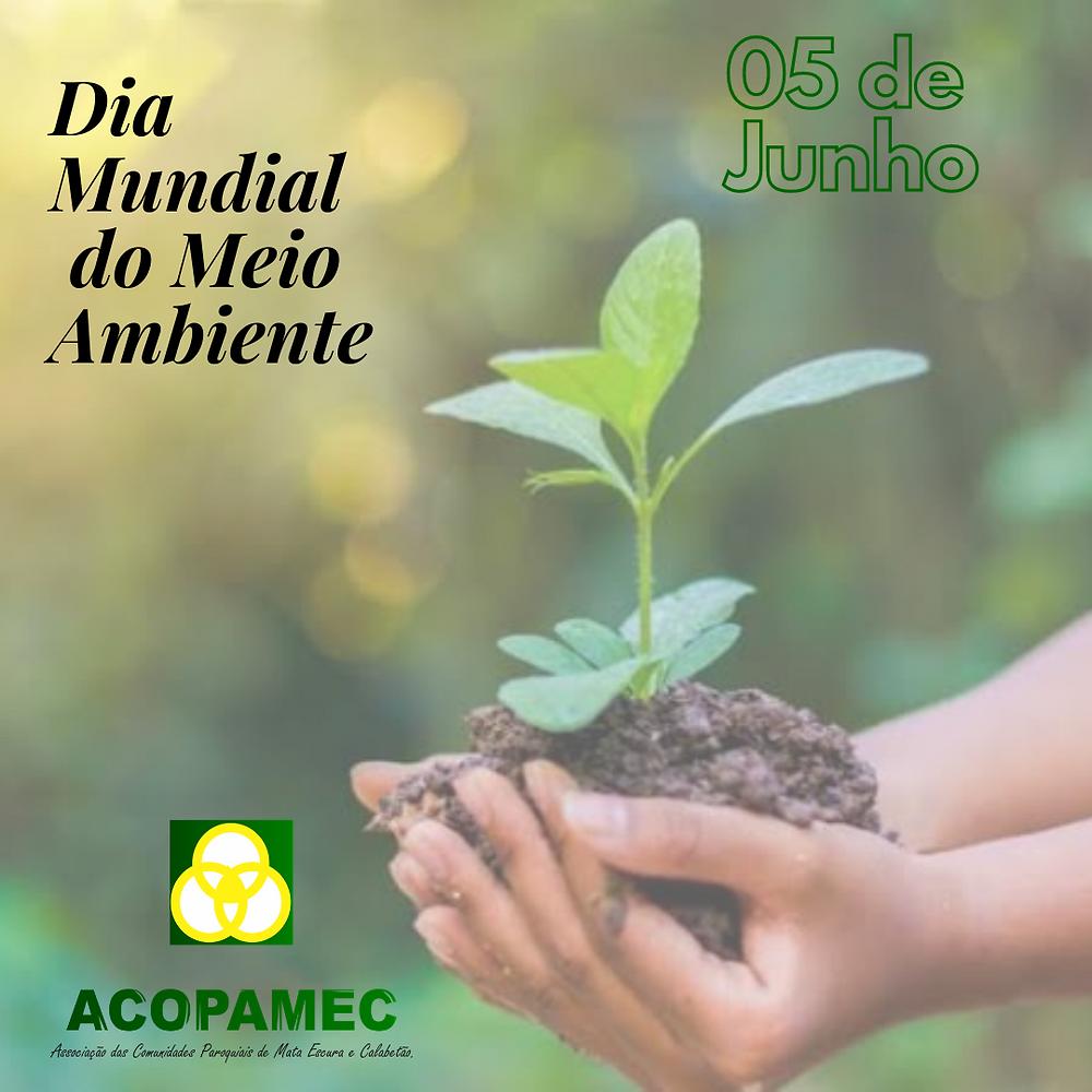 Acopamec - Dia Mundial do Meio Ambiente