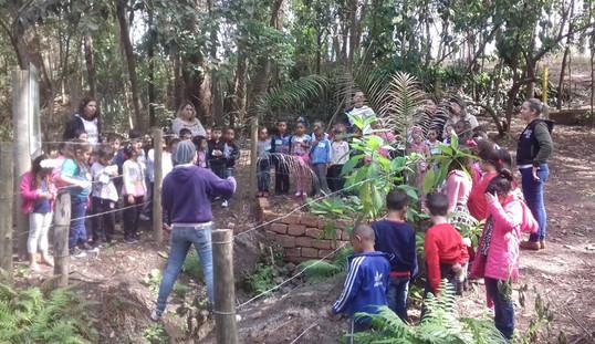 """Triunfo Transbrasiliana inicia o projeto de Educação Ambiental """"Nascentes de Vida"""""""
