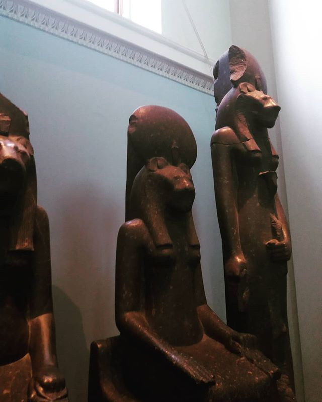 Statues of the goddess Sekmet in the British Museum