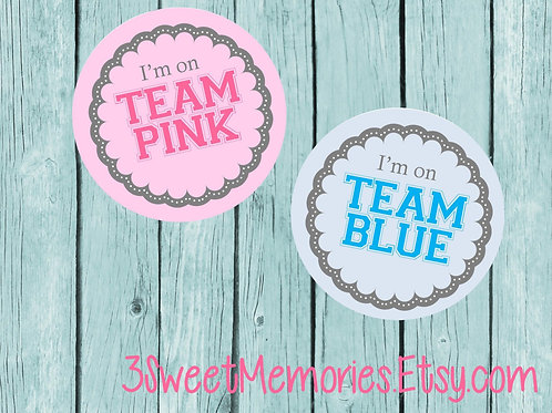 Team PINK and Team BLUE Stickers {Set of 12-48}