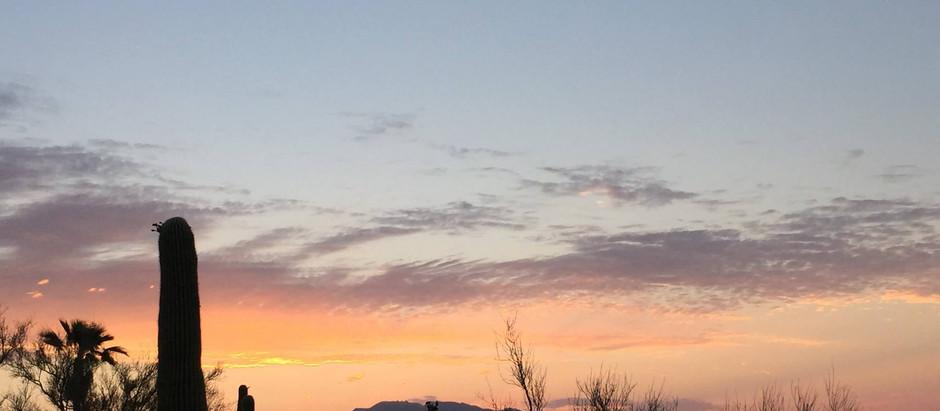 凝視太陽 - Tucson僻靜日記