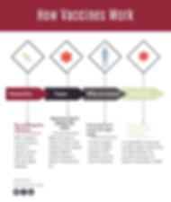 Copy of Copy of VaccinesInfographic.jpg