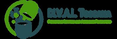 dival nuovo logo 2020 con scritta HIDEF2