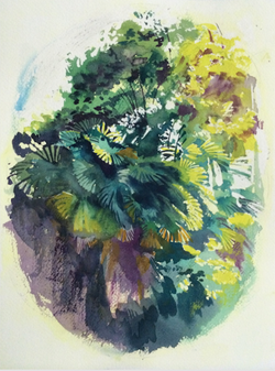Plant Series 003