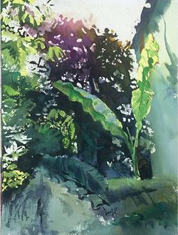 Plant Series 004