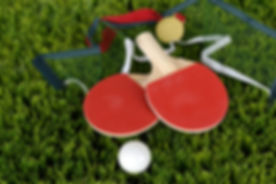 table-tennis-1428052.jpg