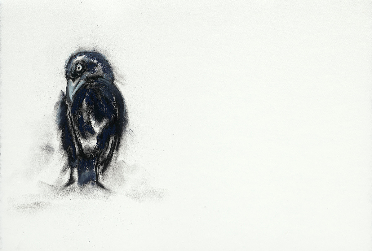 Art.Crow.3.jpeg