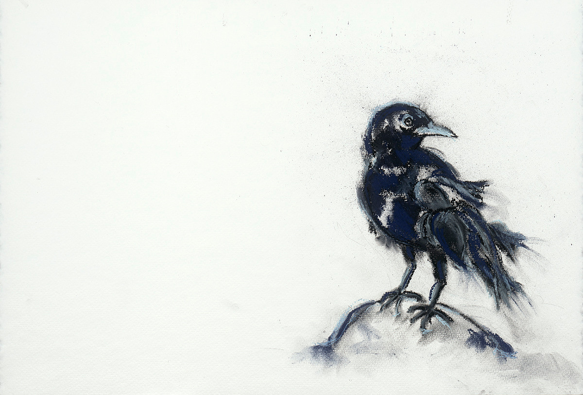 Art.Crow.1.jpeg