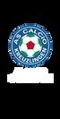 1_calcio.png
