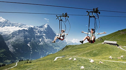 Flying fox First Flyer Grindelwald