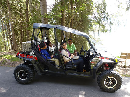 Quad tours in Interlaken, Beatenberg, visit a farm with cows and homemade cheese, jam, honey