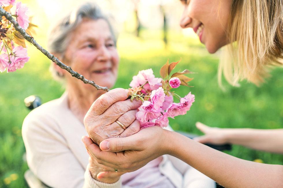 iStock-960150816 roze bloem.jpg