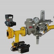 gas control.jpg