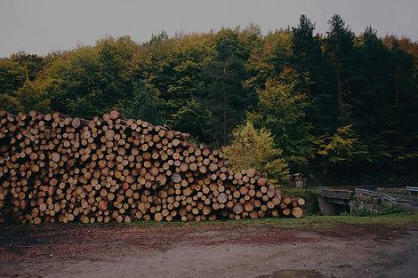 Colheita e movimentação florestal