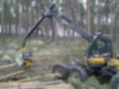 Cabeçote Harvester Kesla