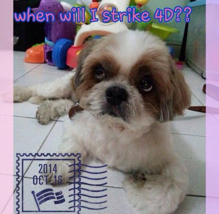 Strike 4D