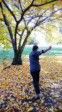 'Disc In Autumn'