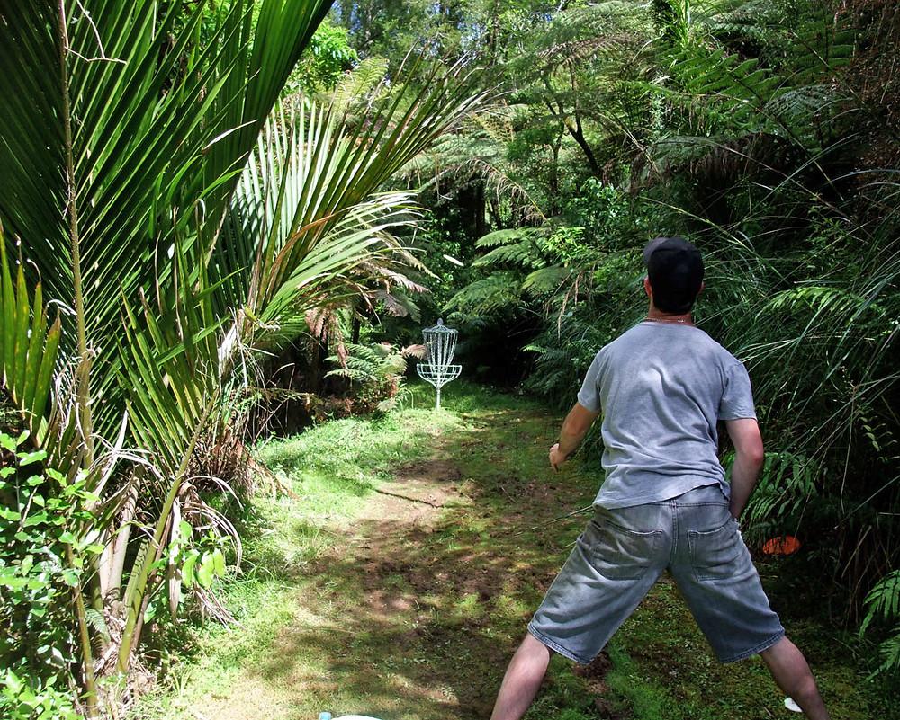 David Keene playing at Bella Rakha, Auckland
