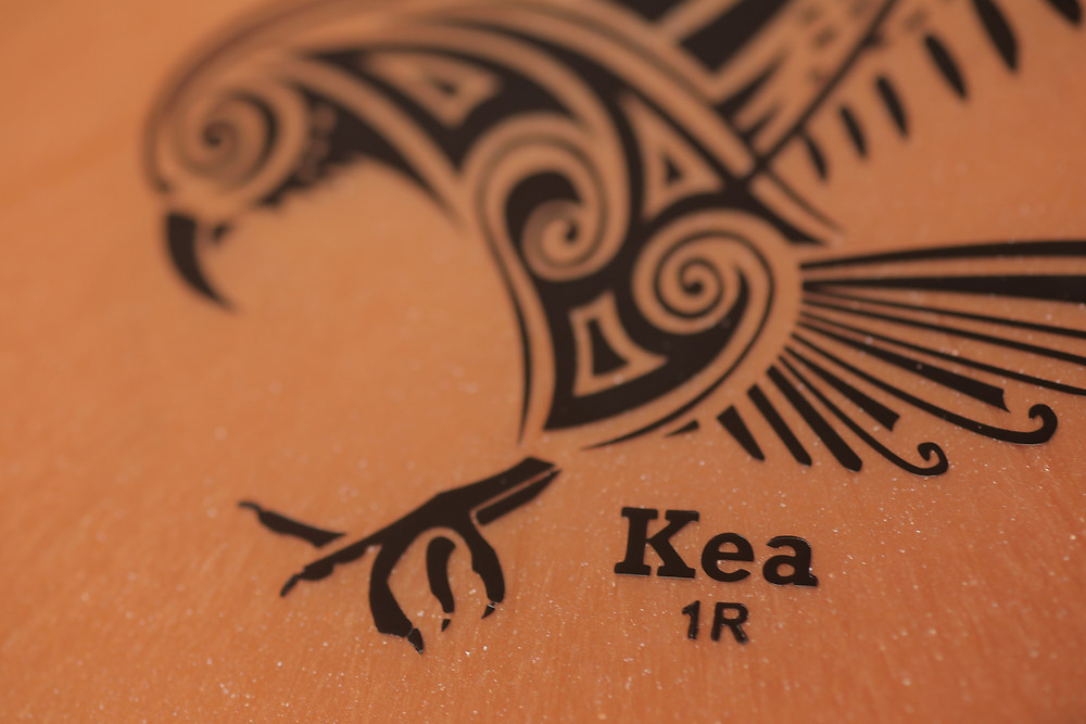 "Kea First Run stamp signified by ""1R""."